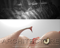 Architecture of Subterranean Species - Remove the designer from the process