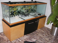 200 Gallon Fish tank Stand