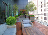 Hensch Residence Deck / Planters / Lattice