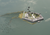 Regenerate Fort Carroll: A Gateway Ecological Park