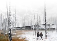 Steam Stratum —Baltic Thermal Pool Park