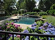 A Pool with a Perennial Garden