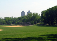 The North Meadow Reconstruction, Central Park