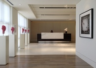 Top Rank Boxing Corporate Offices - TAL Studio Project