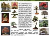 Bonsai Society Conceptual Project