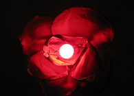 Hanging Rose Lamp