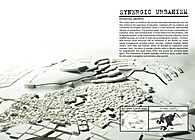SYNERGIC URBANISM