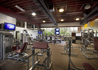 Gym/Fitness center