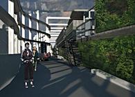 Re-Programming Territories: Densification + Pedestrian Laneway Activation