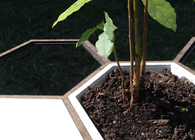 Honeycomb Gardening System
