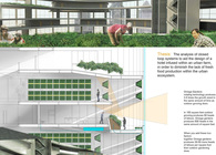 Thesis: Urban Agriculture: Evolving the Urban Environment