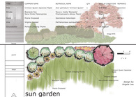 Planting Design Studio Exercises