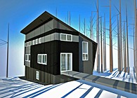 $100,000 House