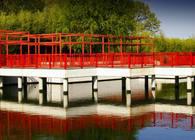 Charles Wang Center - Chinese Garden
