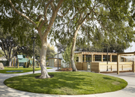 Bay Area Preschool