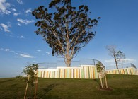 Jacaranda Park