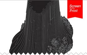 Screen/Print #14: SAN ROCCO's