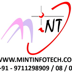 Mint Infotech Pvt. Ltd.