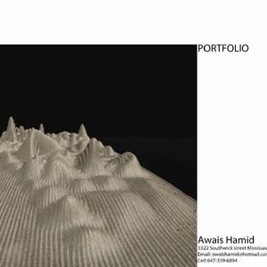 AWAIS HAMID