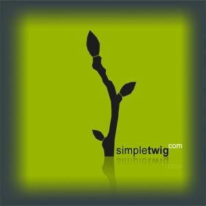 SimpleTwig™ Architecture, llc