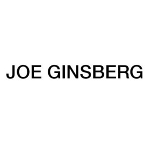 JOE GINSBERG