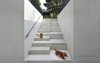 "Ten Top Images on Archinect's ""Stairs"" Pinterest Board"