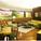 Dymaxion—living