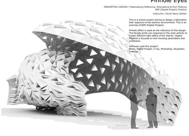 Pinhole Eyes - Materializing Difference, Polyvalence & Pluri-Potency