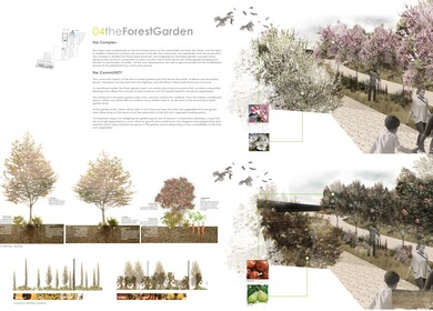 Urban Food Forest