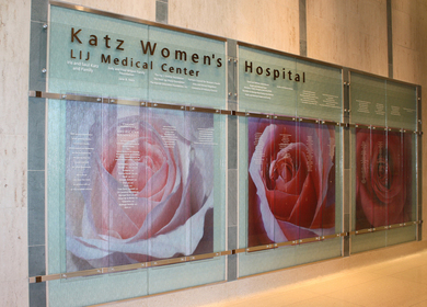 Katz Women's Hospital Donor Recognition