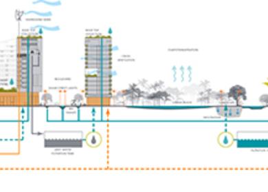 50 hectare Eco Park Masterplan