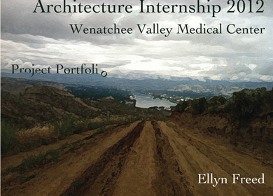 WVMC Healthcare Internship