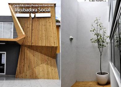 Tec de Monterrey - Incubadora Social