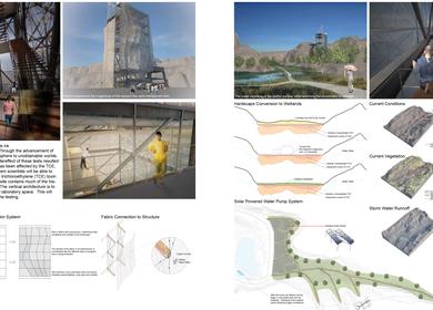 Bio-Remediation Through Wetland Living Systems