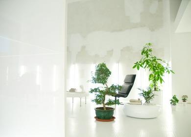 PK office