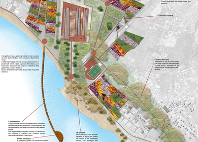 COMPETITION FOR THE REDEVELOPMENT OF WATERFRONT OF SALINE JONICHE AND THE CREATION OF A NATURAL PARK AND ANTHROPIC