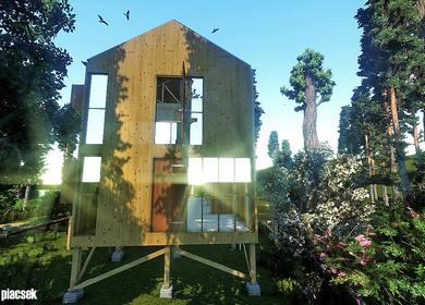 American wood house