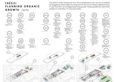 THESIS: PLANNING ORGANIC GROWTH (2010)