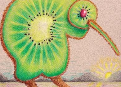 Kiwi, Kiwi