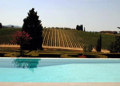 Swimming Pool in Chianti