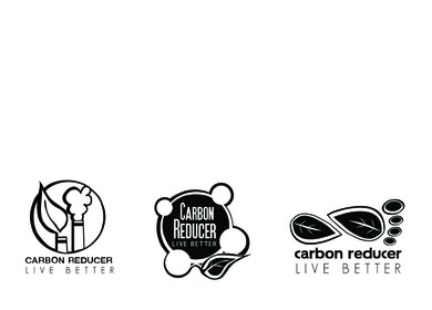Carbon Reducer: Annual Report