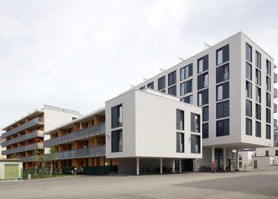 Kindergarten and Housing complex