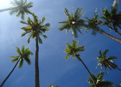 Molokaii Redevelopment Plan
