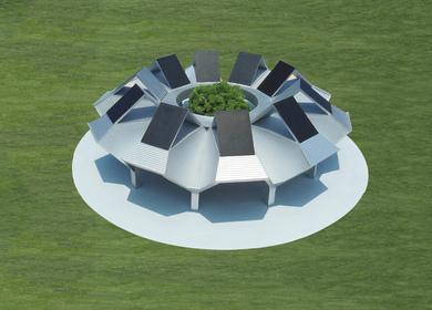 The Solar Rain Tree Oasis