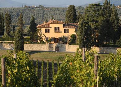 Villa Medicea and Winery Restoration