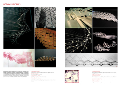 Design Principles Project