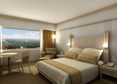 Hotel Presidente Chapultepec