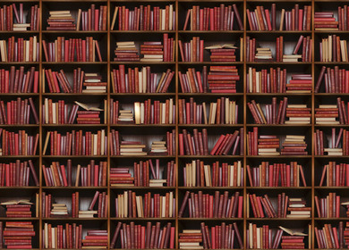 Bookshelf Owl