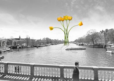 Iconic Pedestrian Bridge in Amsterdam