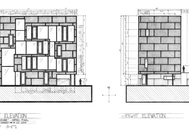 DOUBLE HOUSE: ELEVATIONS (Fall 2010)